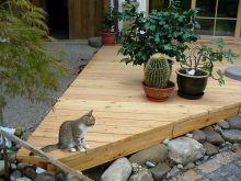Holzterrasse mit Hauskatze