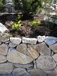 Raumünzacher-Granit