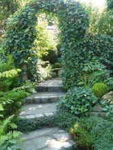 Treppenaufgang mit efeuumrangtem Bogen